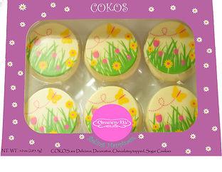 spring cokos draft.jpg