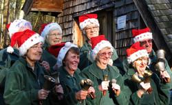 The Handbell Ringers at Christmas