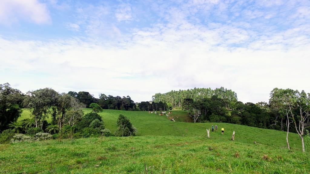panoramira-plato-pico-da-bandeira4