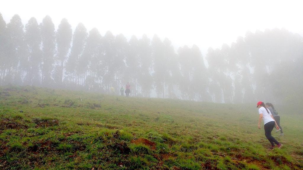 Alto da Serra - Mirante 1