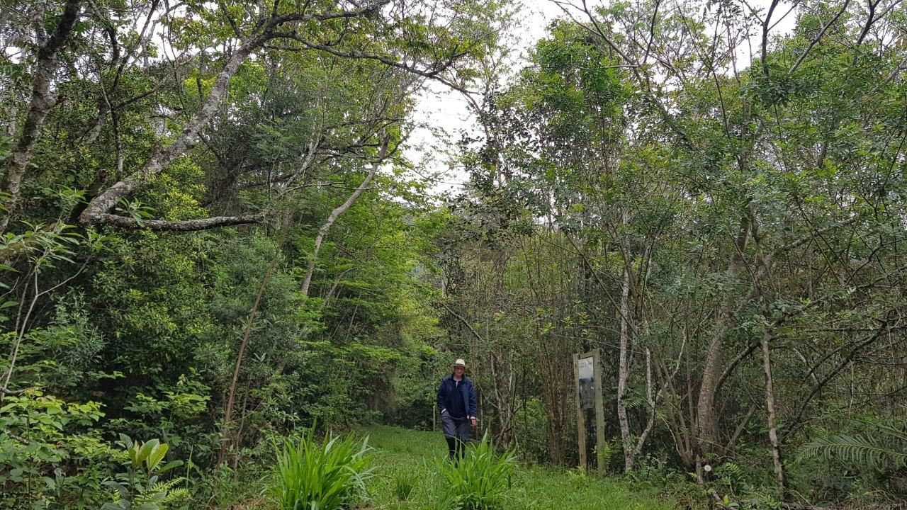 Viveiro Jardim das Florestas e Trilh