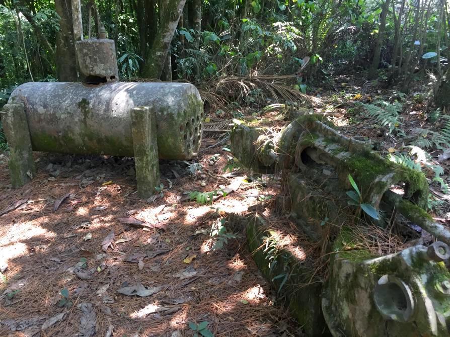 Trilha acesso RPPN Serra do Pitoco