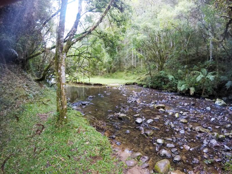Trajeto molhado Rio Sete Quedas