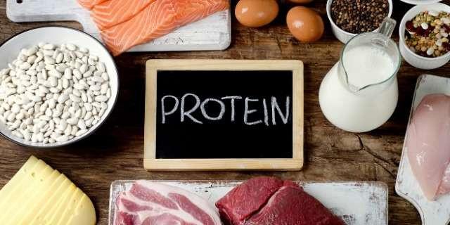 protéines en sèche