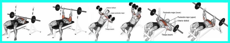 Exercice polyarticulaire en musculation pour les pecs spécial femme