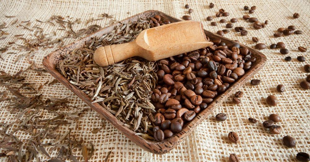 théine et caféine bruleur de graisse sèche