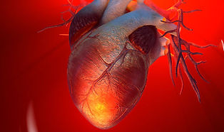 Coronary-heart-disease-1112946.jpg