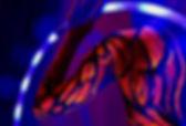 purple pixies test.jpg