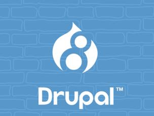 Drupal, voor digitale transformatie