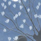 夜の月(辛夷)