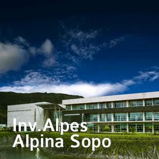Alpina-1.png