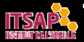 Logo%20ITSAP_edited.png