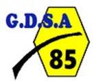 Logo%20GDSA%2085_edited.jpg