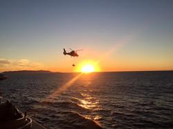 USCG Dophin