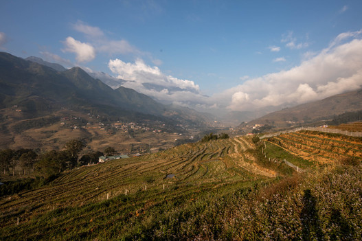 in Sapa in Vietnam we saw fascinating rice terraces and beautiful mountains