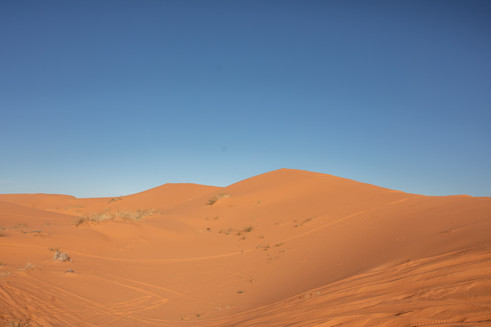 Sanddunes in the Sahara desert | Travel and Landscape Photography in Morocco Africa || Bohoray - Adventure Elopement and Wedding Photographer - Victoria Ruef || www.bohoray.com