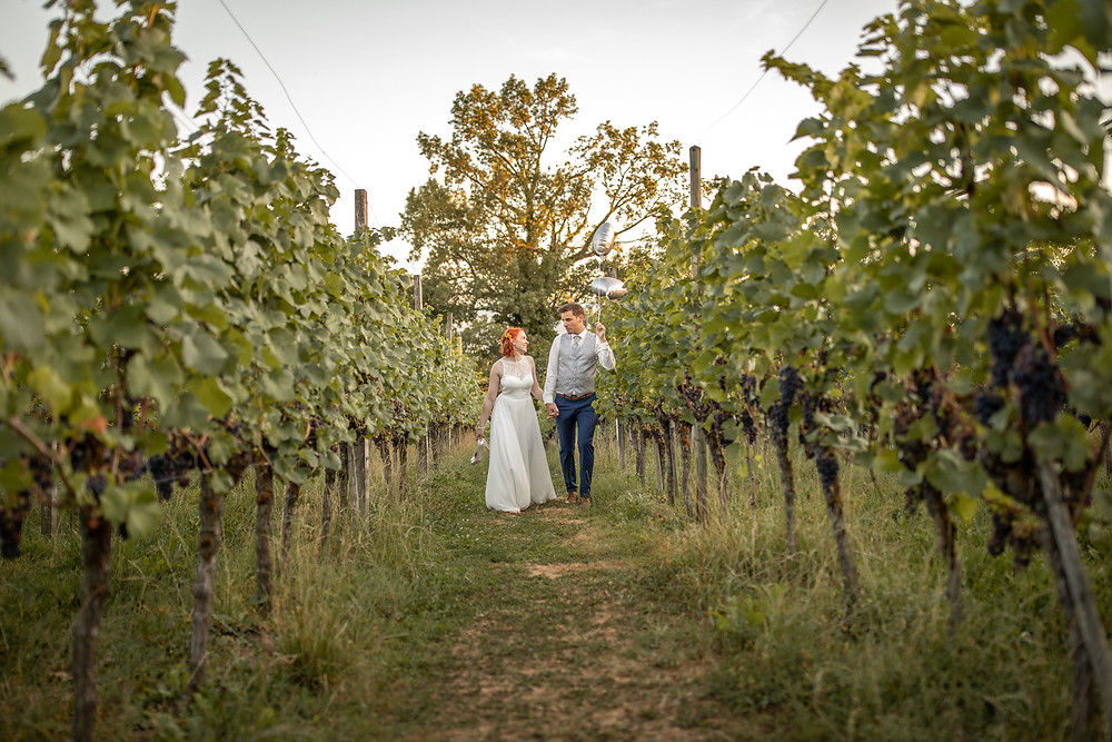Weddingohoto in the vineyards by the lake of constance in Nonnenhorn, Germany, Europe
