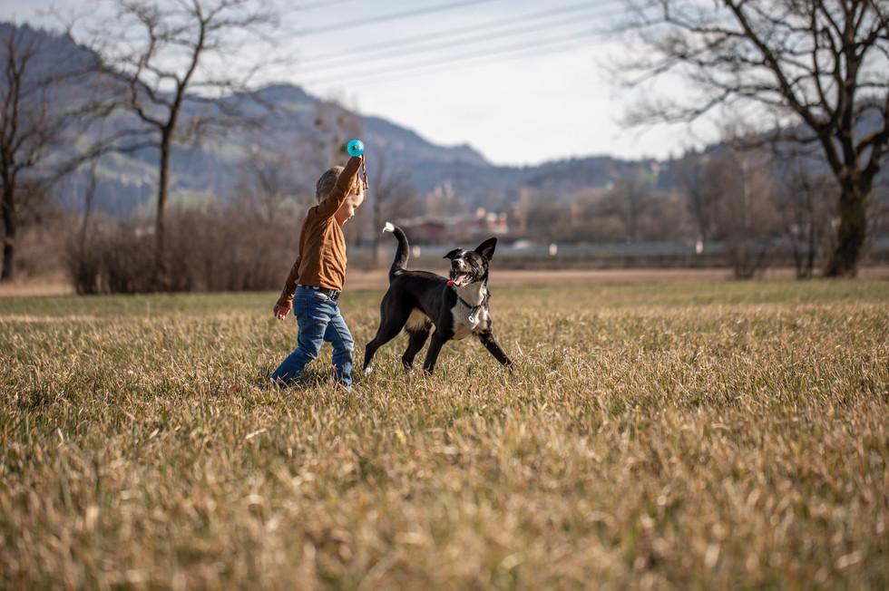 hunde fotos vorarlberg