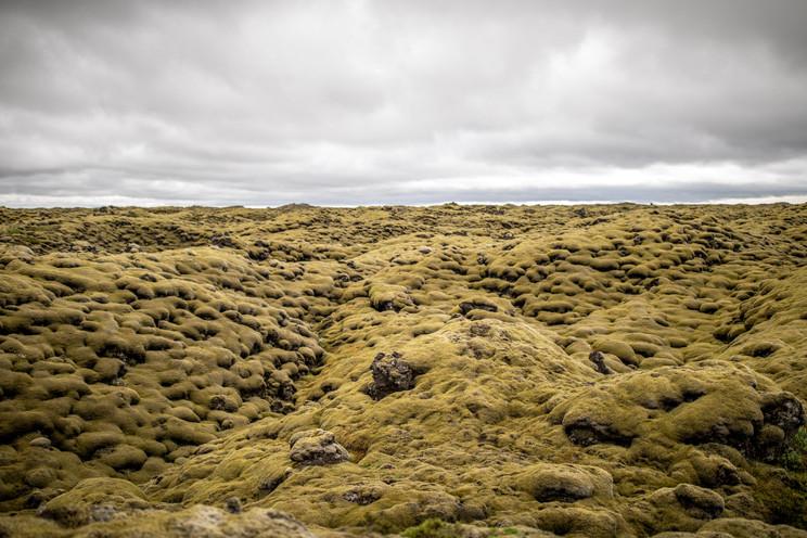 moosbewachsene Lavasteine in Island || Bohoray - Abenteuer Hochzeits und Elopement Fotografin Island - Victoria Rüf  || www.bohoray.com