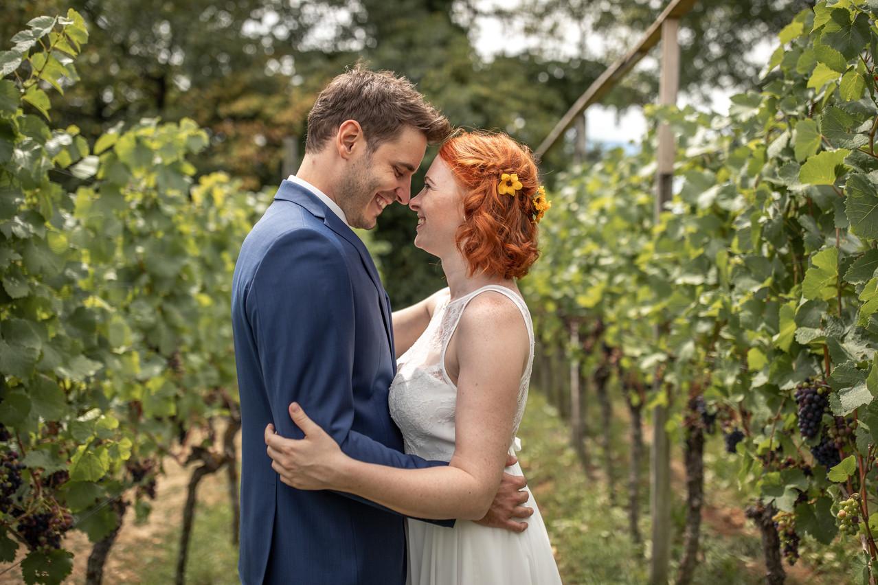 Hochzeitsfotos in den Weinbergen in Deutschland