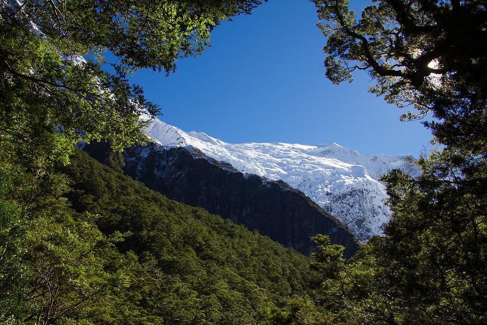 Roy Bob Gletscher auf der Südinsel Neuseelands