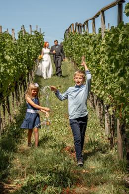 Auf dem Weg zur freien Trauung in den Weinbergen - Hochzeitsfotografie am Bodensee, in Nonnenhorn in Deutschland || Bohoray - Abendteuer Hochzeitsfotos und Elopementfotografin - Victoria Rüf || www.bohoray.com