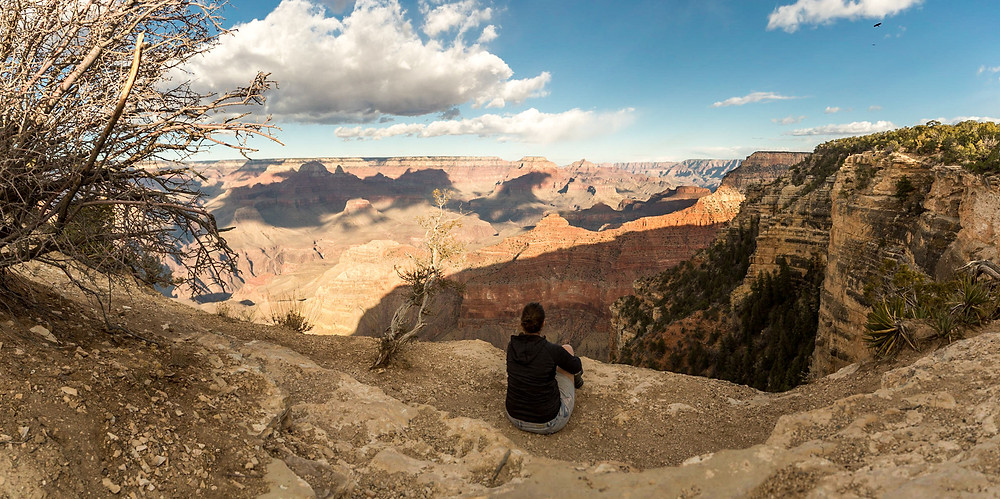 enjoying the view over Grand Canyon