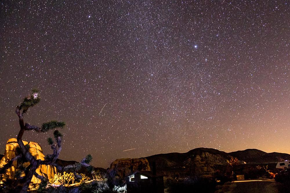 Stars in Jushua Tree Nationalpark
