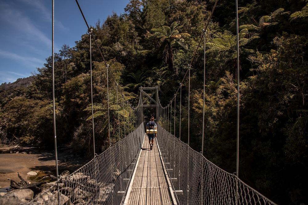 Chain bridge from a Great Walk in New Zealand