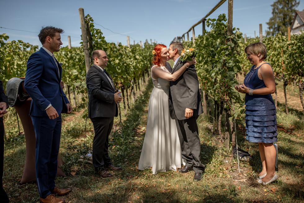 Emotionale Hochzeitsfotografie in den Weinbergen