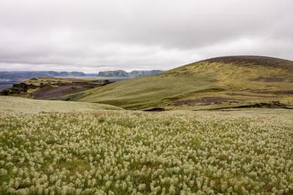 einzigartige Natur in Island || Bohoray - Abenteuer Hochzeits und Elopement Fotografin Island - Victoria Rüf  || www.bohoray.com