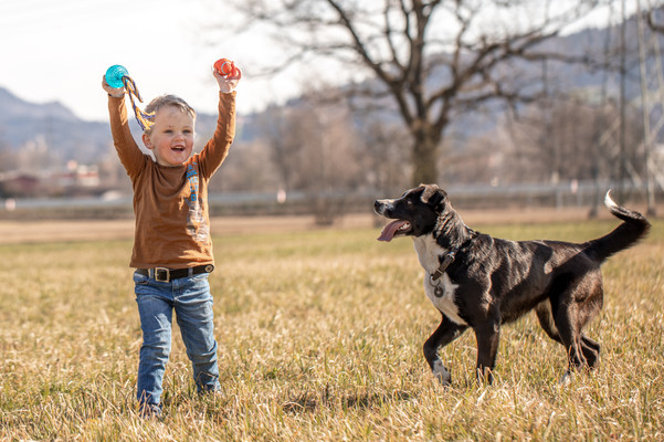 familien fotos mit hund