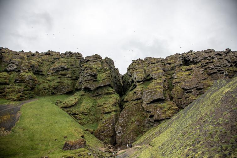 Die Halbinsel Snæfellsnes in Island ist bekannt für die beeindruckende Landschaft und einer Vielfalt von Vögeln  || Bohoray - Abenteuer Hochzeits und Elopement Fotografin Island - Victoria Rüf  || www.bohoray.com