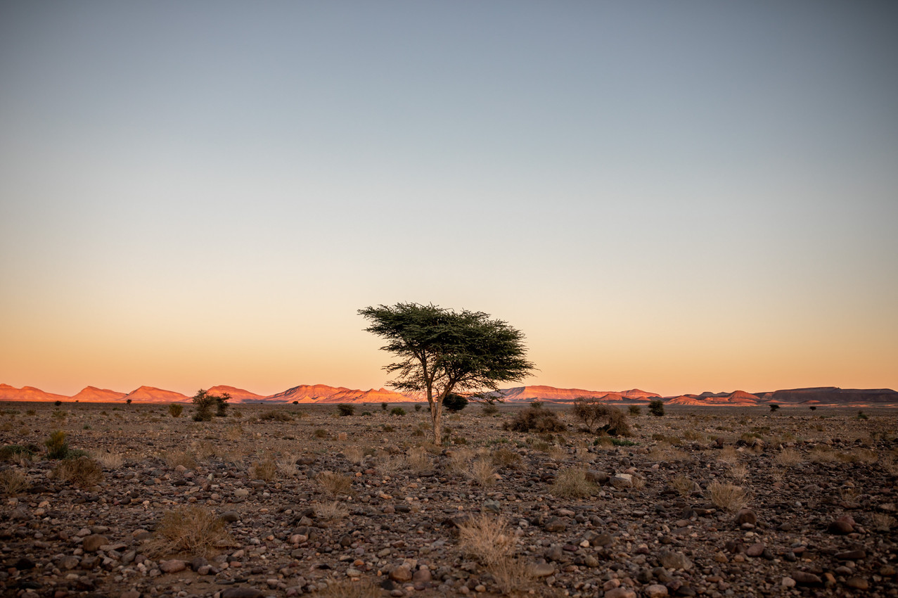 Beautiful Sunset in Morocco | Travel and Landscape Photography in Morocco Africa || Bohoray - Adventure Elopement and Wedding Photographer - Victoria Ruef || www.bohoray.com