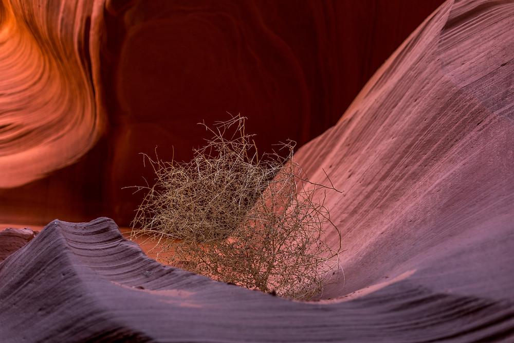 details of Antelope Canyon