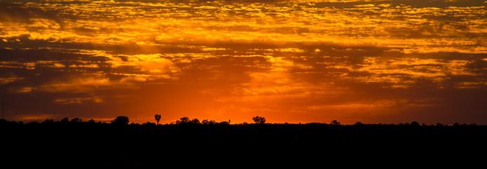 Outback - Australien
