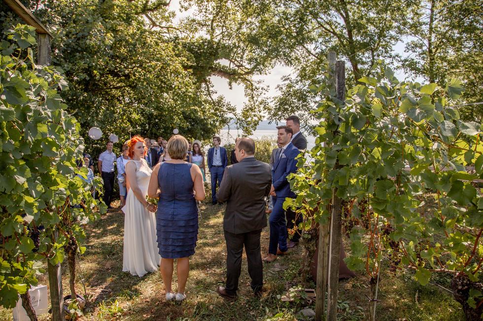Freie Trauung in den Weinbergen am Bodensee