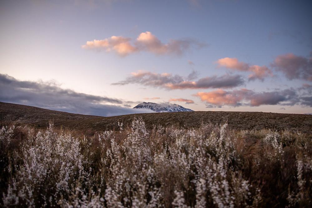 Tongariro crossing der Anfang