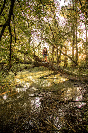 besondere Verlobungsfotos am Bodensee