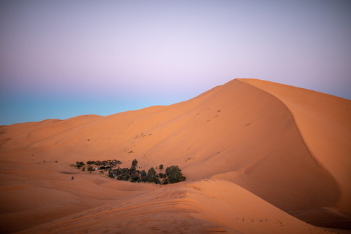 Out Berber Camp right by a little oasis in the middle of the Sahara desert | Travel and Landscape Photography in Morocco Africa || Bohoray - Adventure Elopement and Wedding Photographer - Victoria Ruef || www.bohoray.com