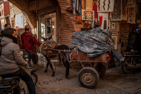 donkes on the streets of Marrakech | Travel and Landscape Photography in Morocco Africa || Bohoray - Adventure Elopement and Wedding Photographer - Victoria Ruef || www.bohoray.com