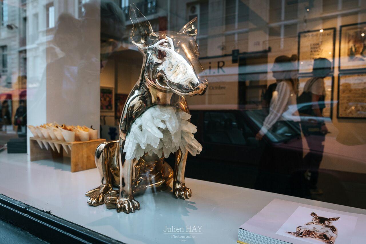 Aurèle Lostdog