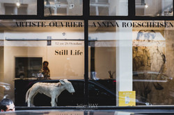 Vernissage-Still-Life-Vanessa-Virag-Julien-Hay-Paris-2017-39_preview