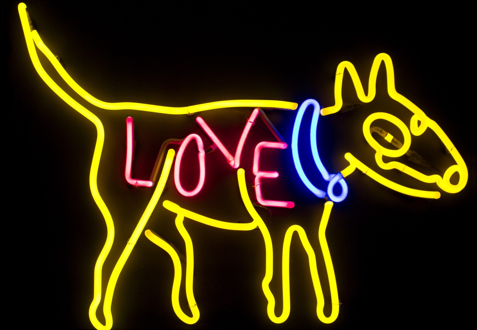 Lostdog Neon Sculpture