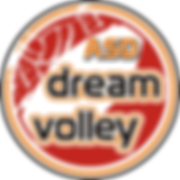 DreamVolley official logo_200x200.png