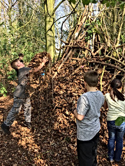 Bushcraft Nottingham