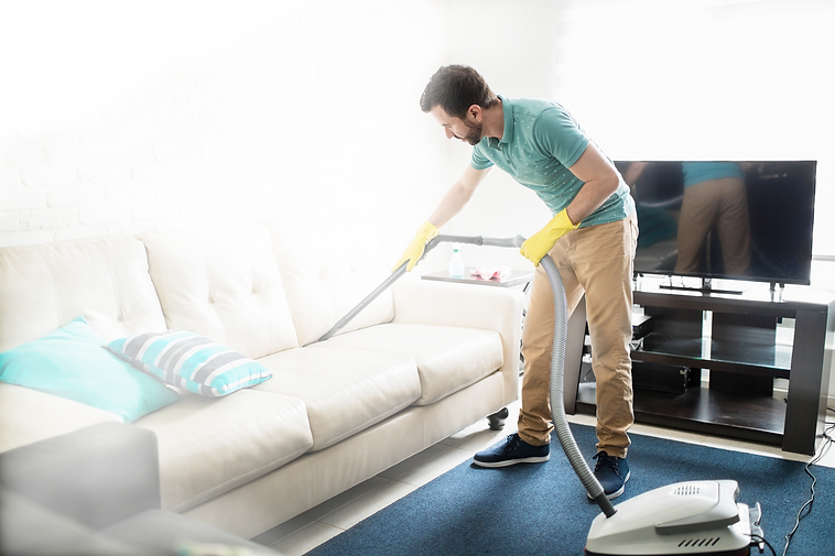 Vacuuming%20the%20Couch_edited_edited.png