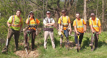 Bartram Woodlands treeplant crew