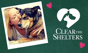 cclear the shelters.jpg