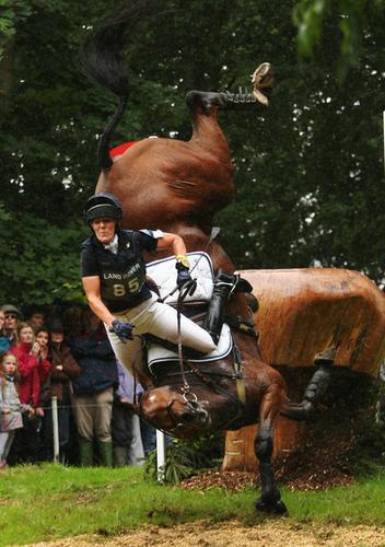 Reiki pour chevaux